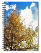 Colorado Sky Spiral Notebook