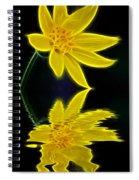Colorado Wildflower Spiral Notebook