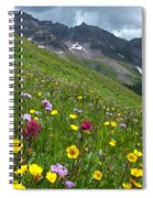Colorado Wildflowers And Mountains Spiral Notebook