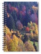 Colored Landscape Spiral Notebook