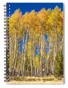 Colorful Aspen Panorama Spiral Notebook