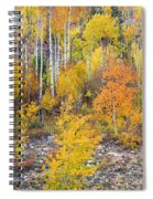 Colorful Autumn Forest In The Canyon Of Cottonwood Pass Spiral Notebook