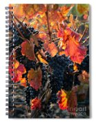 Colorful Autumn Grapes Spiral Notebook