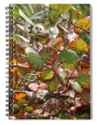 Colorful Beach Sea Grapes Spiral Notebook