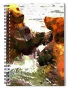 Colorful Bears Spiral Notebook
