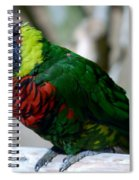 Colorful Bird  Spiral Notebook