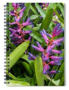 Colorful Bromeliad Spiral Notebook