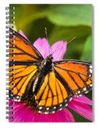 Orange Viceroy Butterfly Spiral Notebook