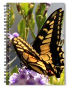Colorful Butterfly Square Spiral Notebook