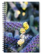 Colorful Cactus Red Purple Green Yellow Plant Fine Art Photography Print  Spiral Notebook