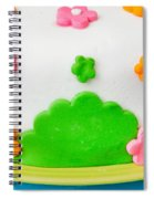 Colorful Cake Spiral Notebook