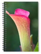 Colorful Calla Spiral Notebook