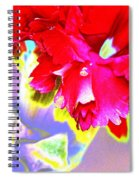 Colorful Carnation Spiral Notebook
