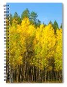 Colorful Colorado 2 Spiral Notebook
