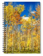 Colorful Colorado Autumn Aspen Trees Spiral Notebook