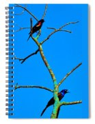 Colorful Duet Spiral Notebook