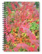 Colorful Fall Leaves Autumn Crepe Myrtle Spiral Notebook