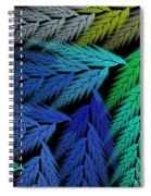 Colorful Feather Fern - Abstract - Fractal Art - Square - 3 Ll Spiral Notebook