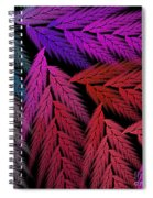 Colorful Feather Fern - Abstract - Fractal Art - Square - 4 Lr Spiral Notebook