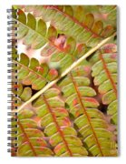Colorful Fern Square Spiral Notebook