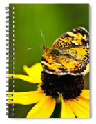 Colorful Landing Spiral Notebook