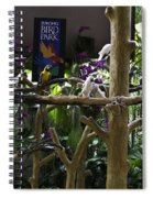 Colorful Macaw And Other Birds At The Jurong Bird Park In Singapore Spiral Notebook
