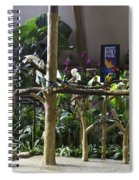Colorful Macaws And Other Small Birds On Trees At An Exhibit Spiral Notebook