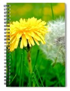 Colorful Macro Spiral Notebook