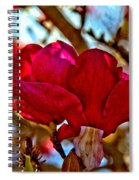 Colorful Magnolia Blossom Spiral Notebook
