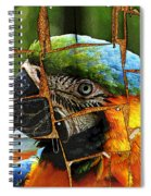 Colorful Notes Spiral Notebook