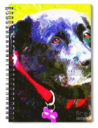 Colorful Old Dog Spiral Notebook