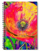 Colorful Poppy Spiral Notebook