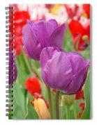 Colorful Spring Tulips Garden Art Prints Spiral Notebook