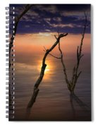 Colorful Sunset Seascape With Tree Trunks Spiral Notebook