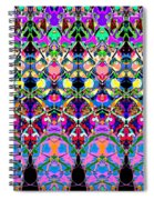 Colorful Symmetrical Abstract Spiral Notebook