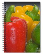 Colorful Trio Spiral Notebook
