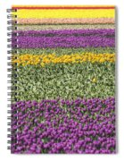 colorful tulips in Holland Spiral Notebook