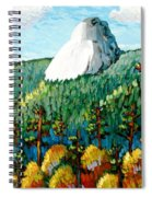 Colorful View Of Idyllwild California Spiral Notebook