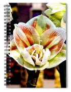 Colorful White Spiral Notebook