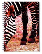Colorful Zebra - Buy Black And White Stripes Art Spiral Notebook