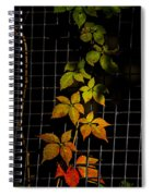 Colors Change Spiral Notebook