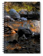 Colors Changing Spiral Notebook