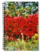 Colors Of Life Spiral Notebook