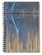 Colors Of March Spiral Notebook