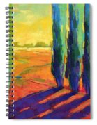 Colors Of Summer 3 Spiral Notebook