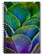 Colors Of The Cabbage Patch Spiral Notebook