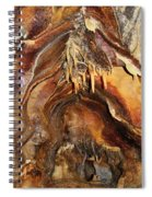 Colors Of The Ohio Caverns Spiral Notebook