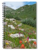 Colors Of The Rainbow - Colorado Mountain Summer Spiral Notebook
