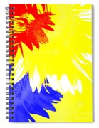 Colors Within Spiral Notebook