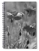 Colour Blind Poppies 1 Spiral Notebook